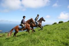 randonnée,cheval,açores,randocheval,rando