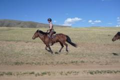 mongolie,randcheval,sabine,grataloup