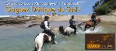 randocheval,concours,afrique du suf,afrique