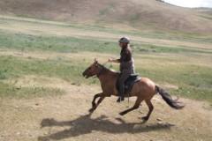 mongolie,cheval,randonnée,équitation,monter,randocheval
